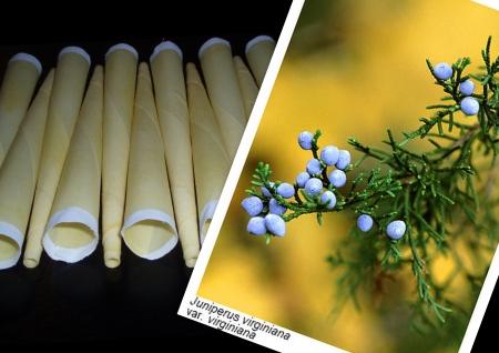 Tělové svíčky cedrové 5ks